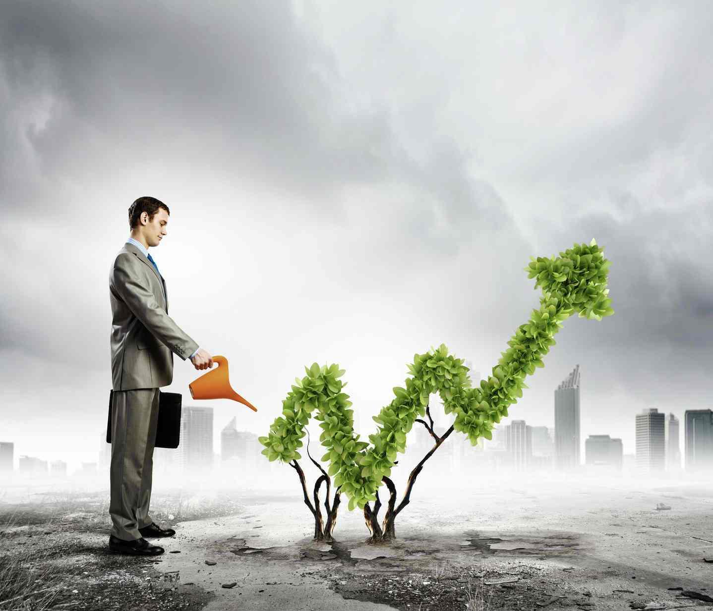 Прямые и портфельные инвестиции: понятия, отличия, плюсы и минусы