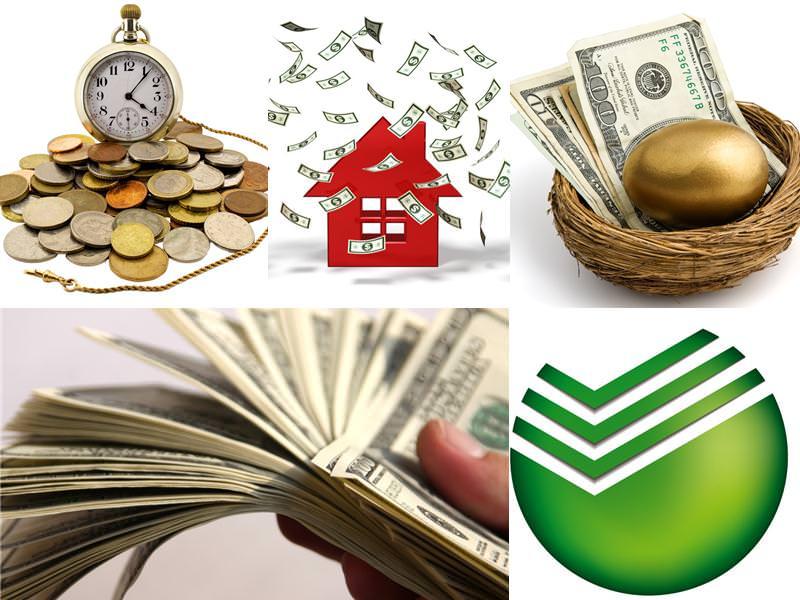 Виды и условия программ кредитования
