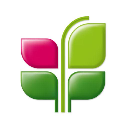 ренессанс кредит личный кабинет вход онлайн по номеру телефона