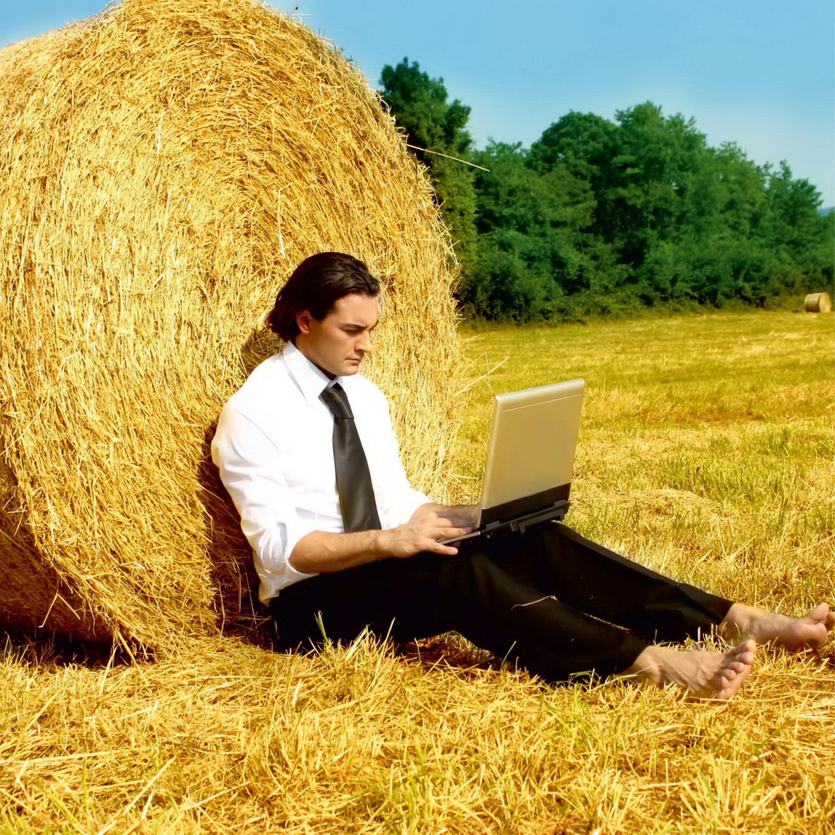 Как взять кредит для развития сельского хозяйства